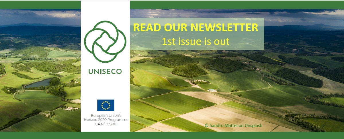 UNISECO 1st newsletter is out