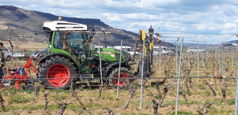The French case study : Network of grape production in CUMAS