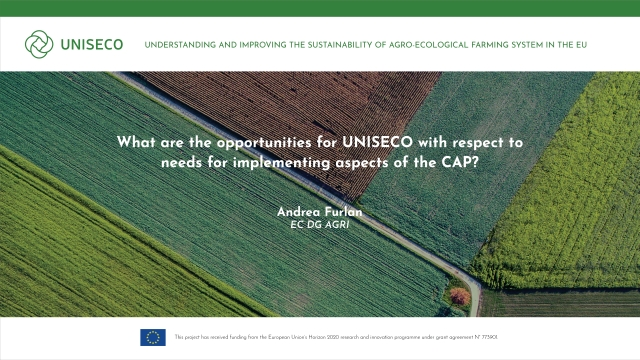 What are the opportunities for UNISECO with respect to needs for implementing aspects of the CAP?